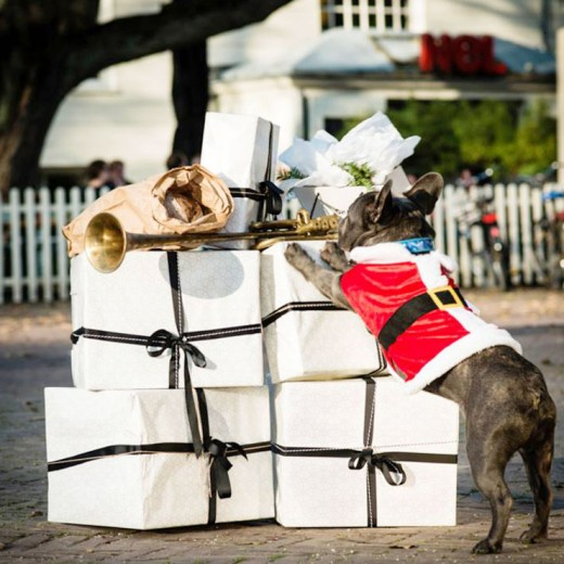 Leukste kerstmarkten in de randstad - Sissy-Boy kerstmarkt