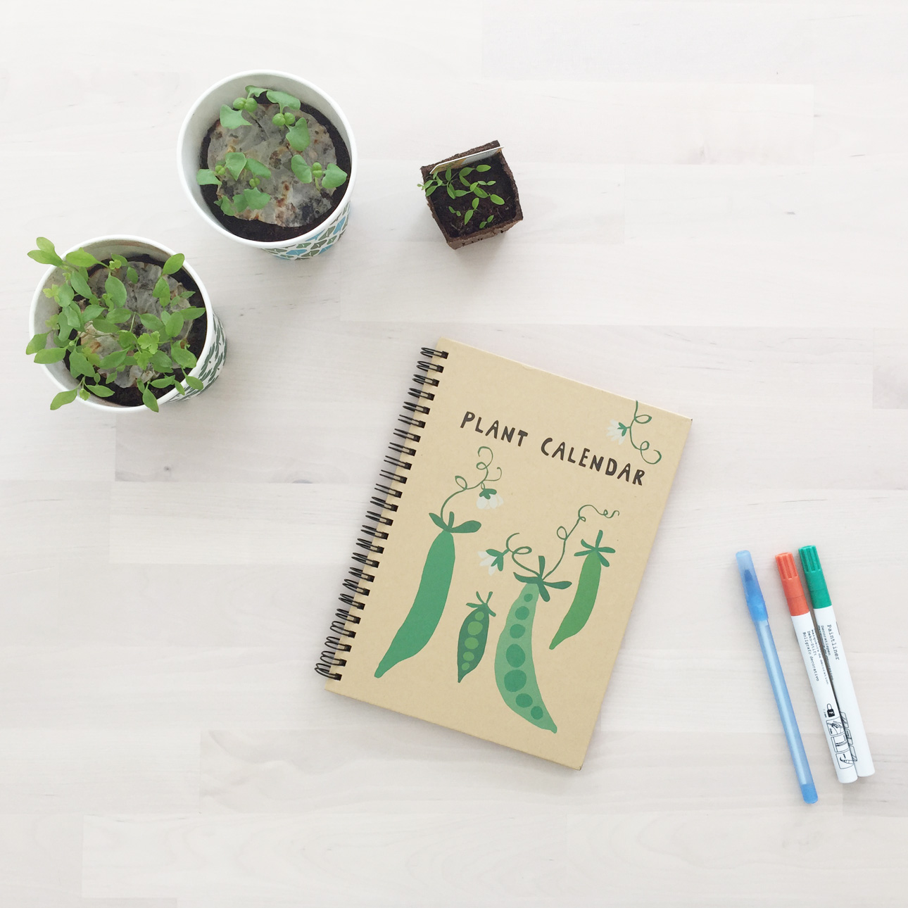 mamalifestyle moestuintjes tuindagboek plant calendar