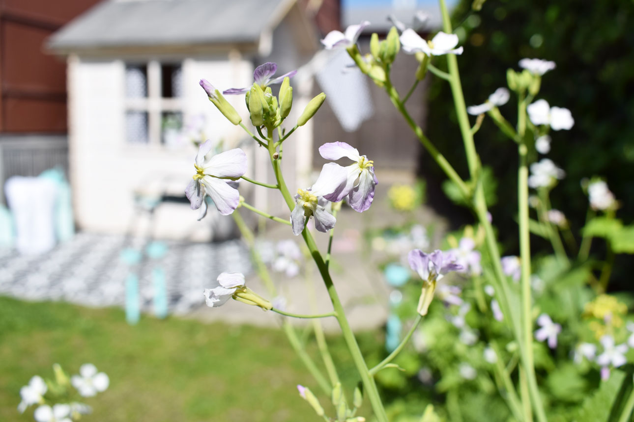 mamalifestyle tuin buiten huisje