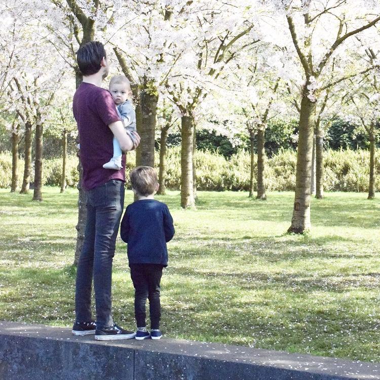 amstelveen bloesempark frank javian senne