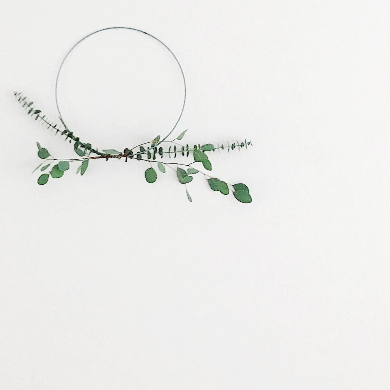 kerstkrans eucalyptus takken
