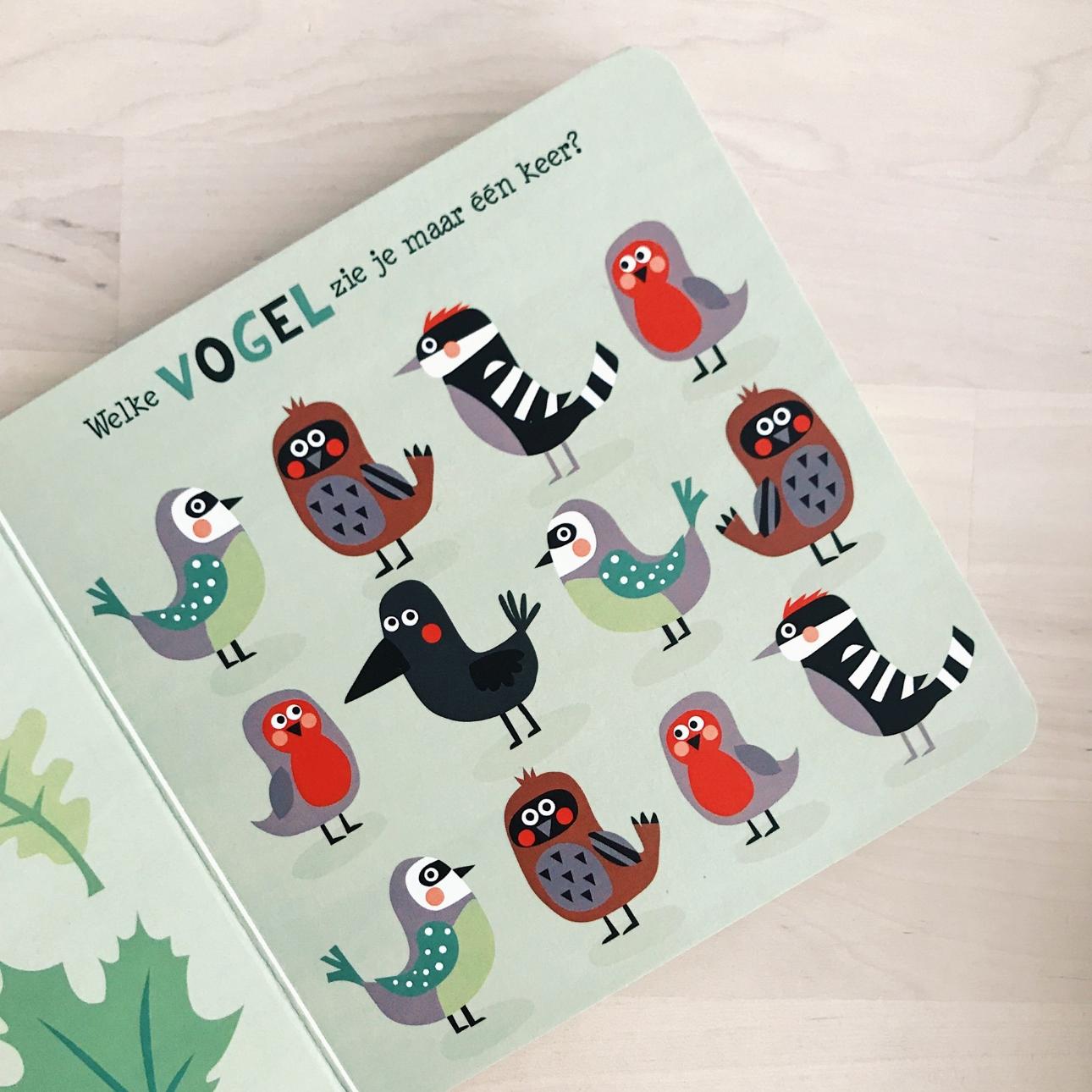kinderboek het bonte bos clavis vogel