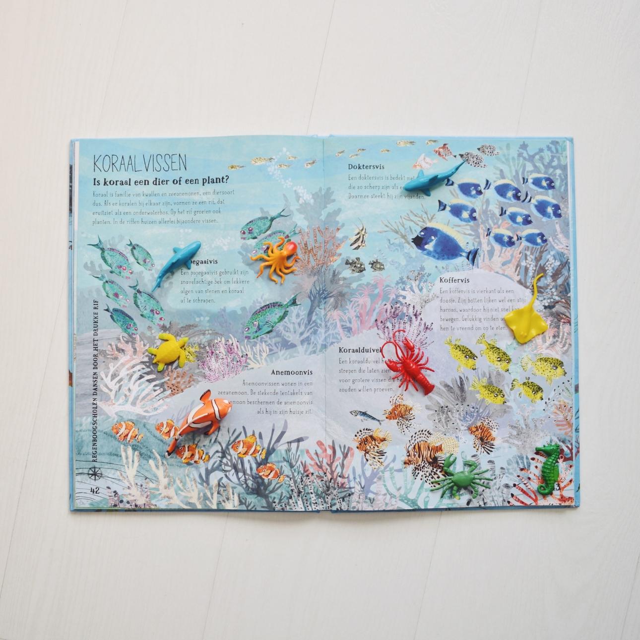 prentenboek zinderende zee boek vissen voorleesboek
