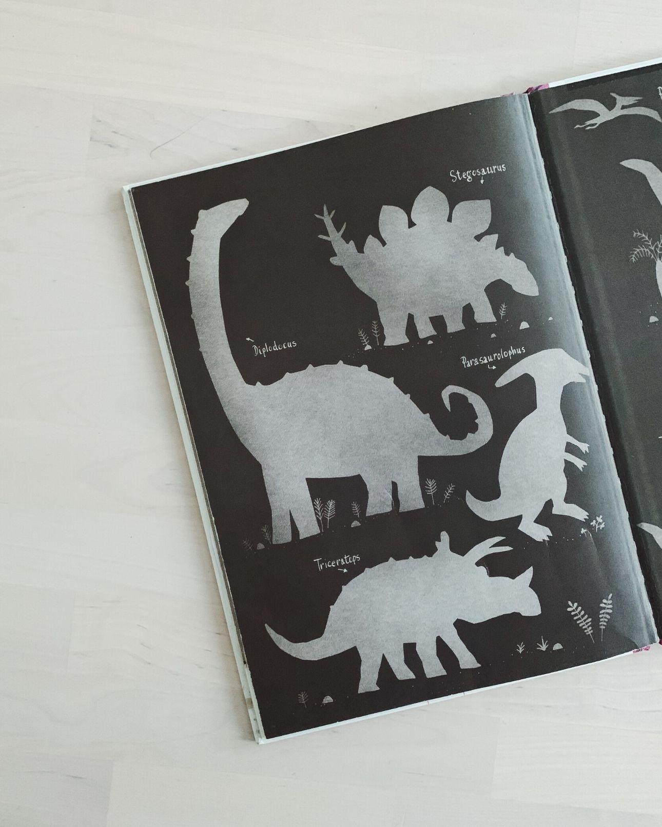 Kinderboek Het ongeloofelijke maar waargebeurde verhaal over de dino's (2)