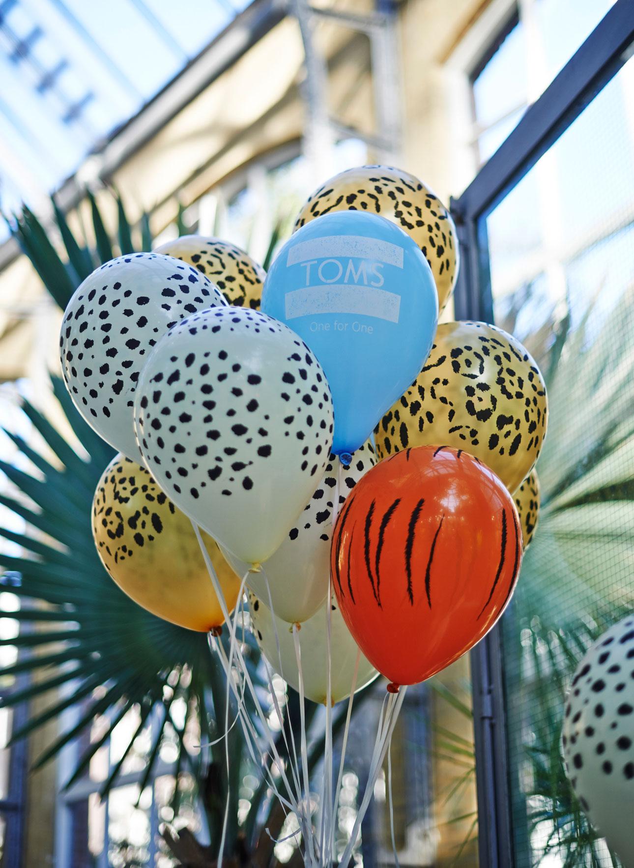 toms animal initiative perspresentatie ballonnen toms