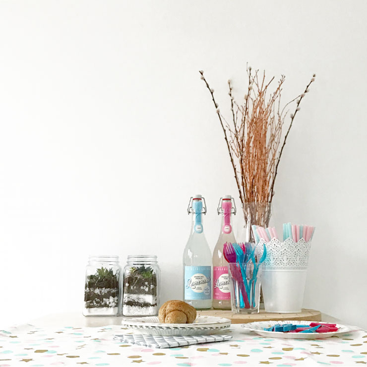 mamalifestyle gender reveal party tafel limonade
