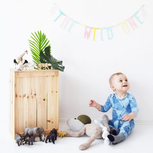 senne the wild one eerste verjaardag