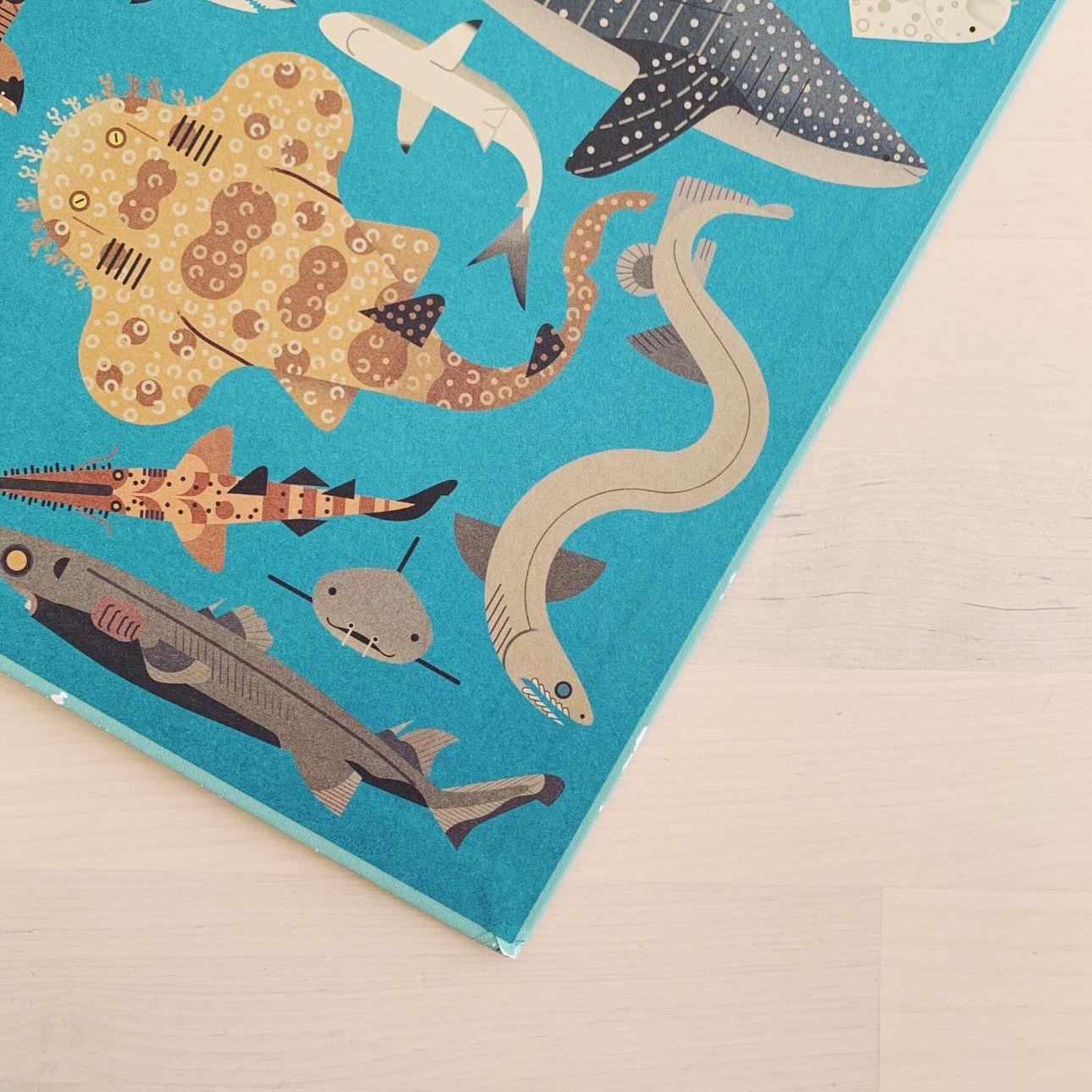 Owen Davey kinderboek haai ahoi