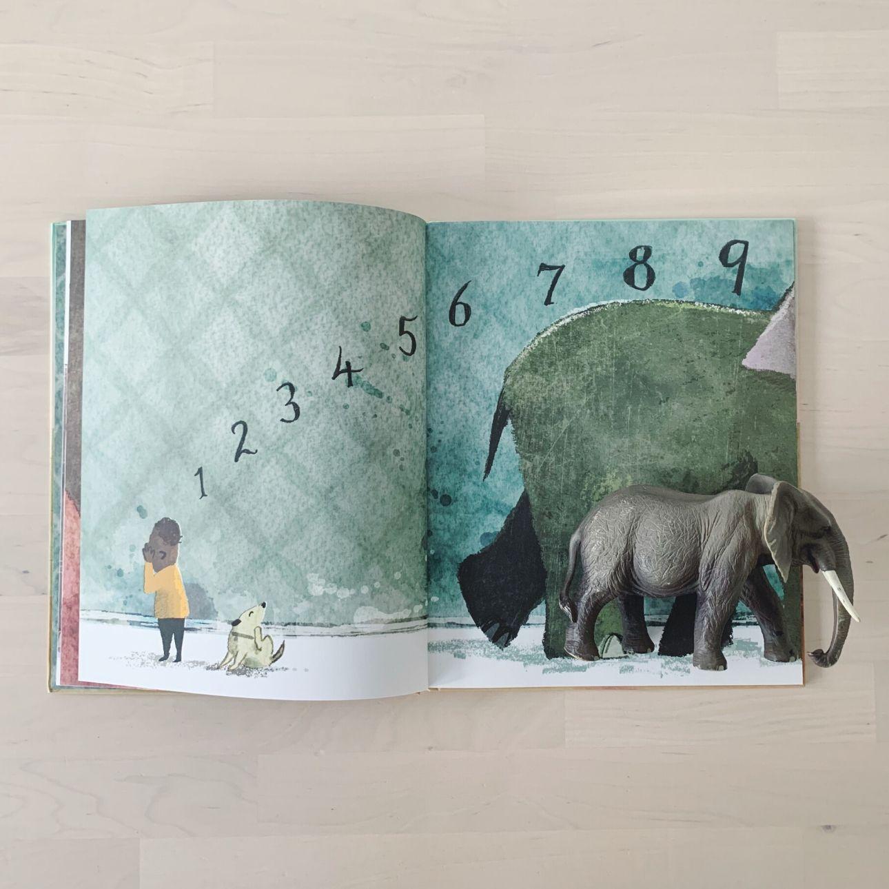 Heb jij misschien olifant gezien - kinderboek tellen