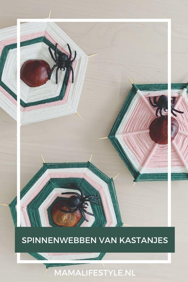 Pinterest - DIY HERFST spinnenweb kastanje