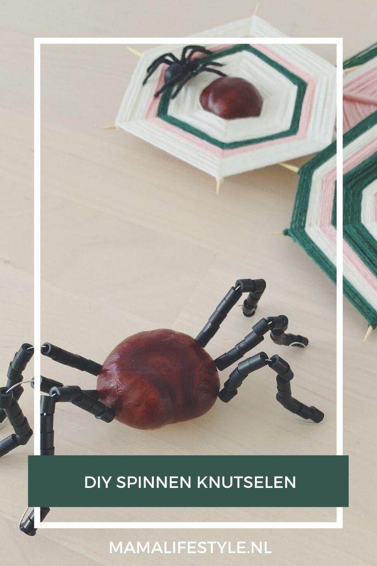 Herfst diy kastanje spin spinnenweb